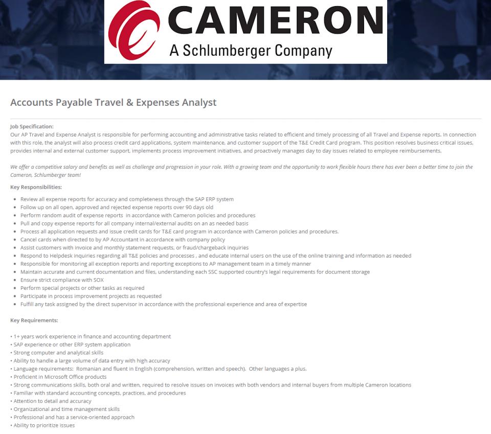 Accounts Payable Travel & Expenses Analyst, CAMERON - Apply