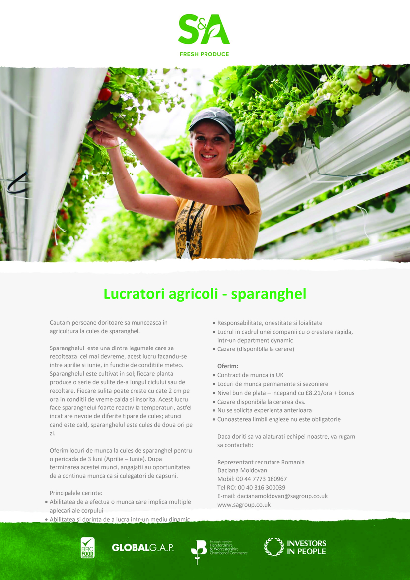 S&A Group is the UK's largest independent strawberry grower. The Group, which also has berry growing operations overseas and grows early UK asparagus, uses modern and innovative growing techniques to drive and support its thriving year-round soft fruit import business. Our principal customers include the major multiple food retailers.Our people are core to our business and we are proud of providing a working environment that allows people to grow and develop in all areas of the business. The atmosphere at S&A is fast paced, exhilarating and rewarding. We offer a competitive salary, 33 days annual leave, pension contributions, exclusive high street vouchers via our benefits hub and scope to uncover your potential with a rapidly expanding, independent business.