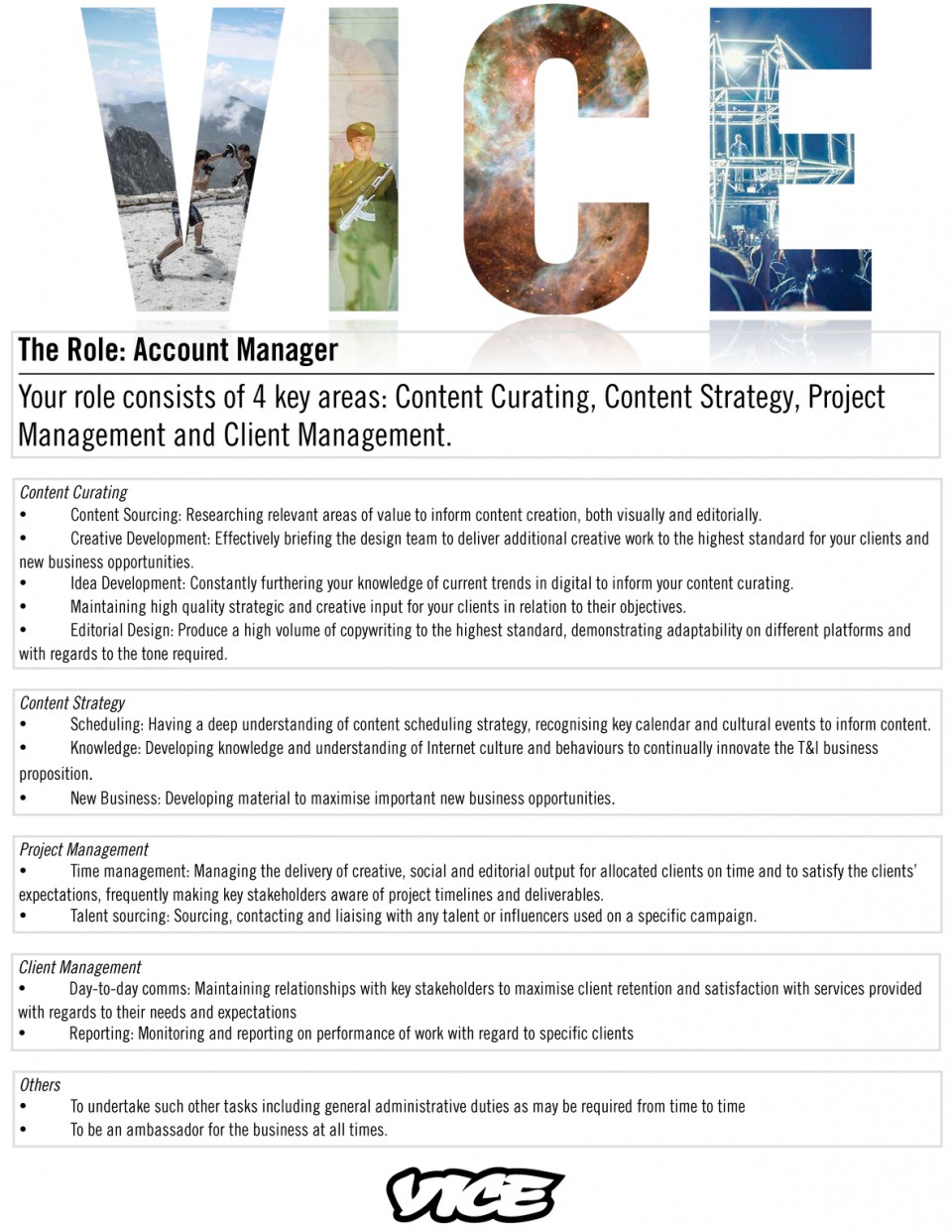 account manager  vice antenna srl
