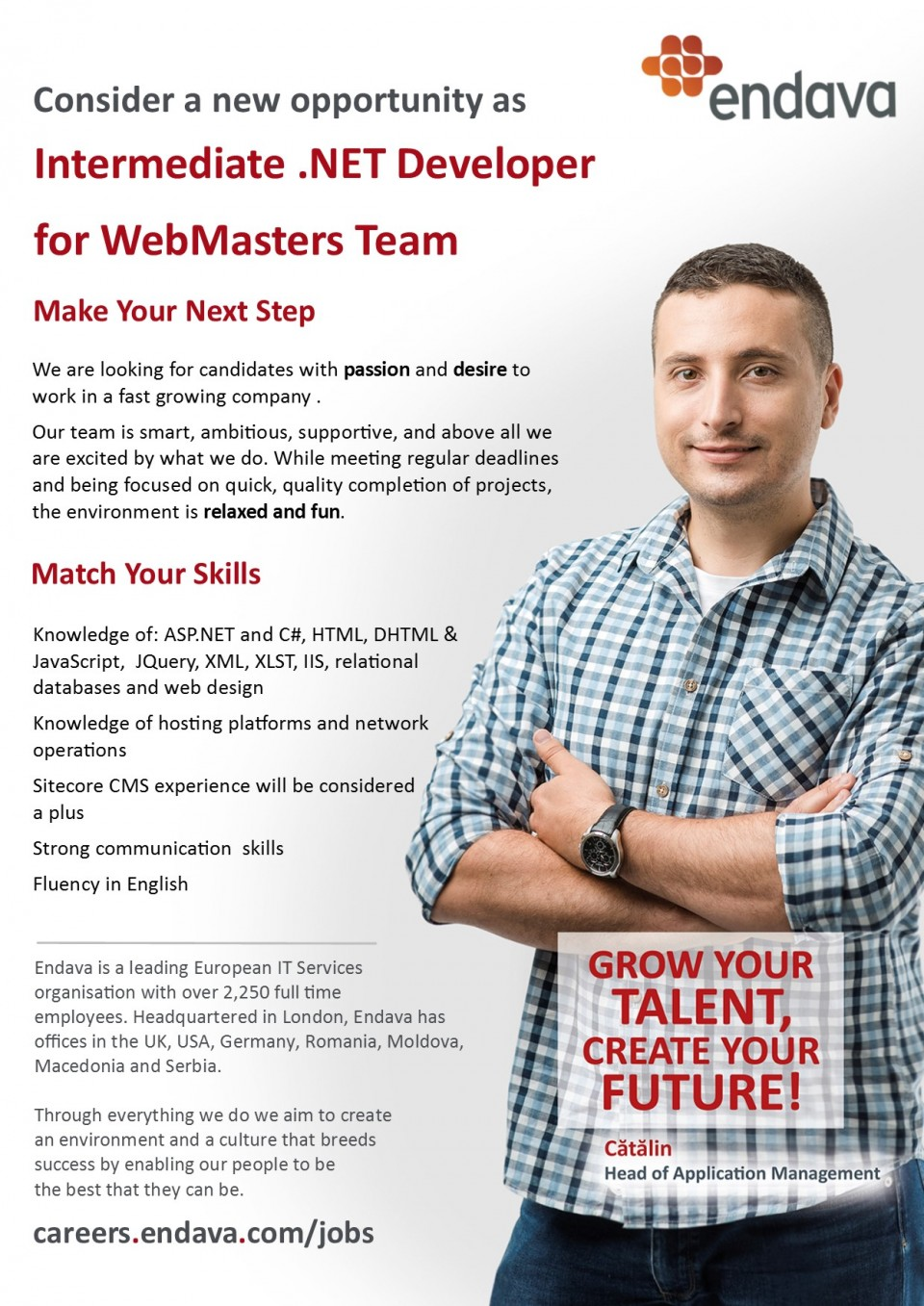 intermediate  net developer for webmasters team  endava