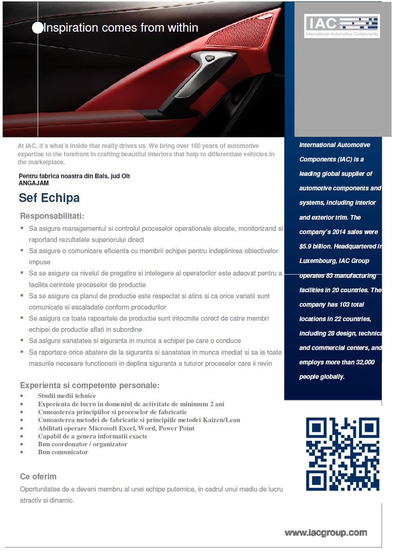 sef echipa  international automotive components group s r