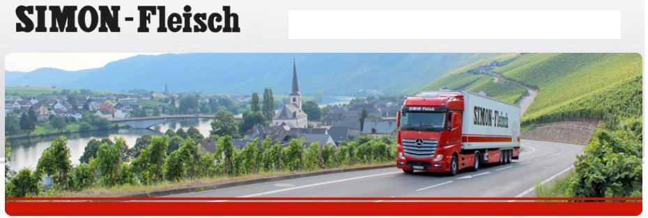 Sofer camion / truck driver / Kraftfahrer