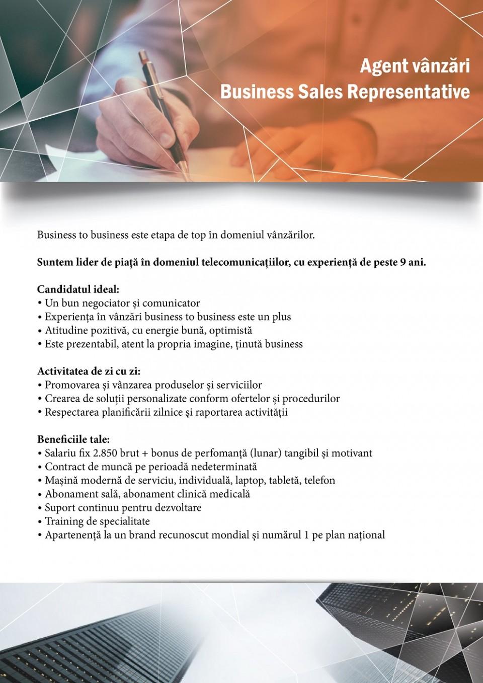 Agent vanzari - Business Sales Representative